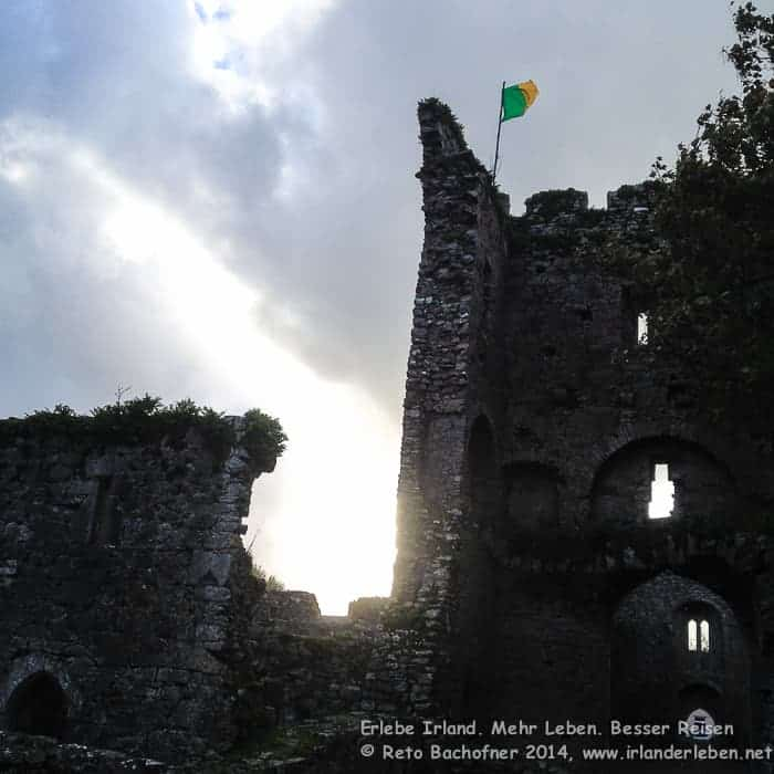 Castlelyons Friary