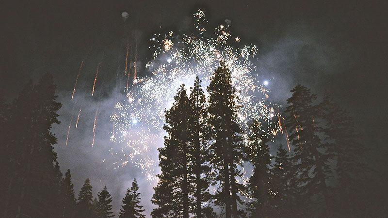 Feuerwerk im Wald