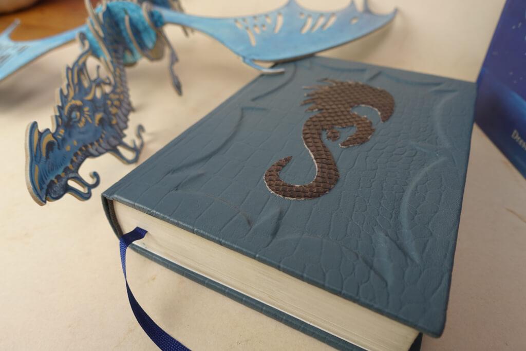 Ein neuer Bucheinband für den Drachenreiter