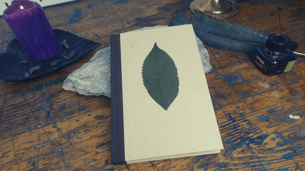 Projekt: Buch aus der Natur - Eco Print Technik
