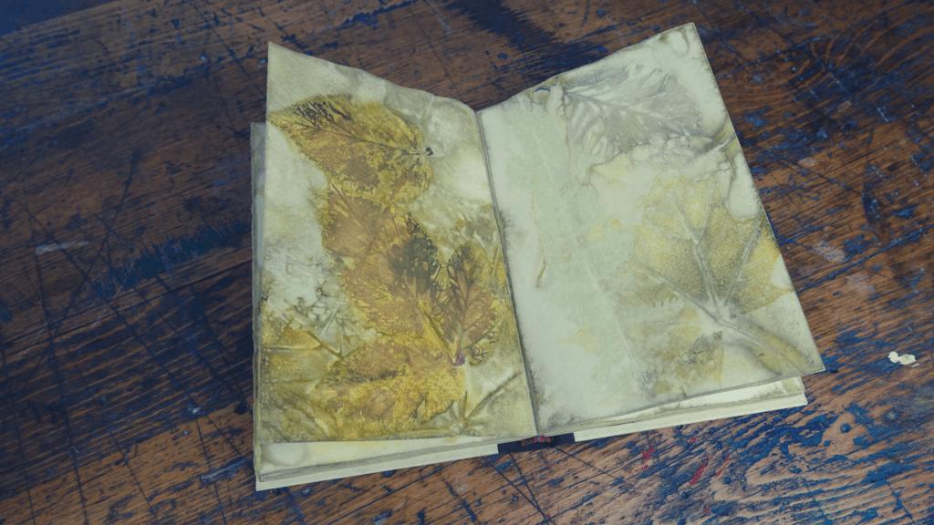 Anleitung: Eco Print auf Papier anwenden