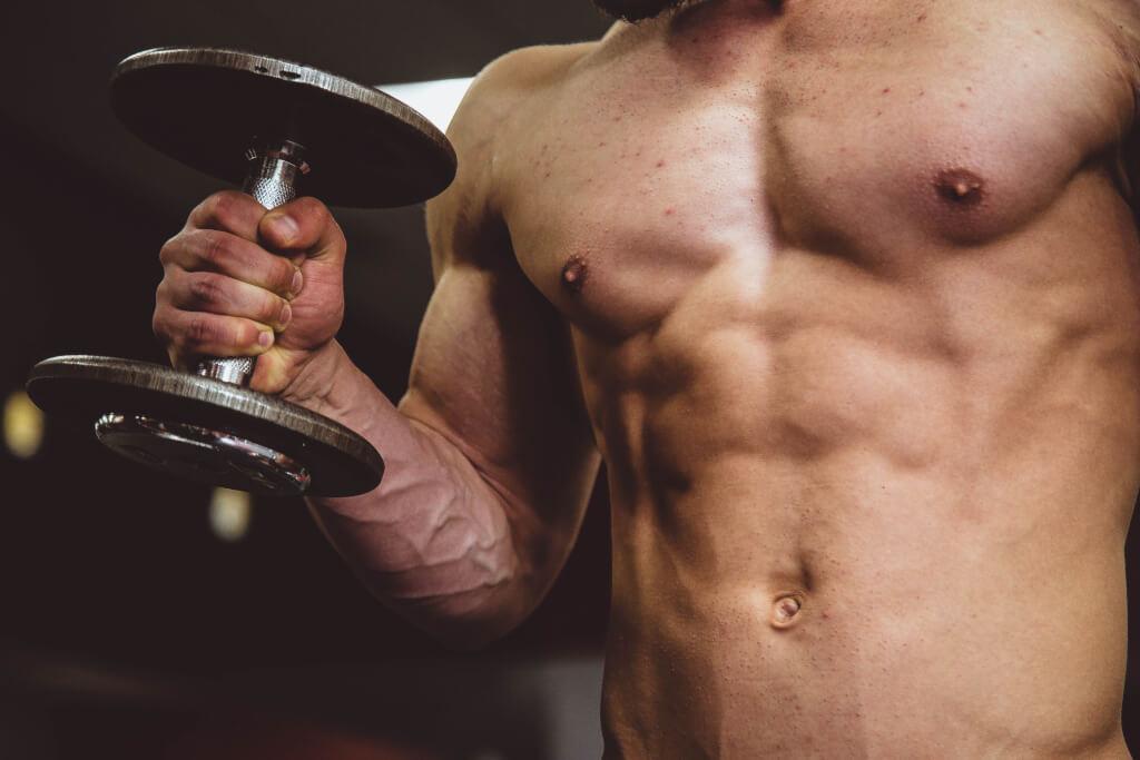 Muskelaufbau mit dem 9 Punkte Erfolgsplan