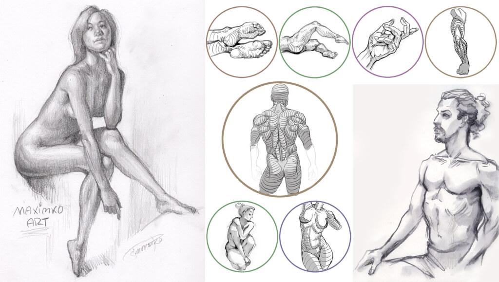 sich im zeichnen verbessern mit Maxim Simonenko koerper menschen anatomie zeichnen bleistift grundaufbau online kurse maximko
