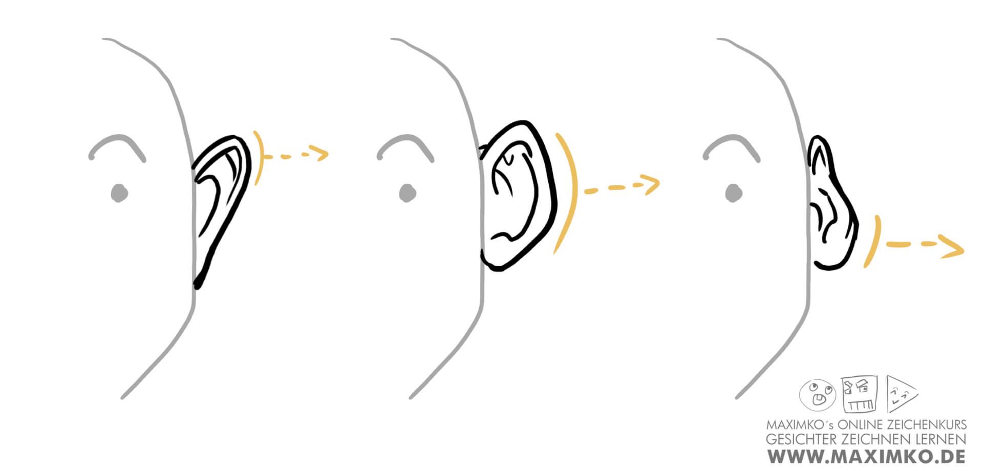 ohren zeichnen lernen tutorial online kurs workshop maximko