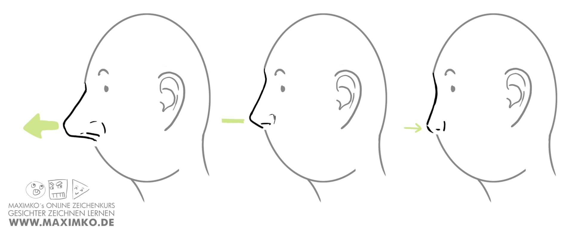 nase zeichnen lernen tutorial online kurs workshop abstehende nase flache nase maximko