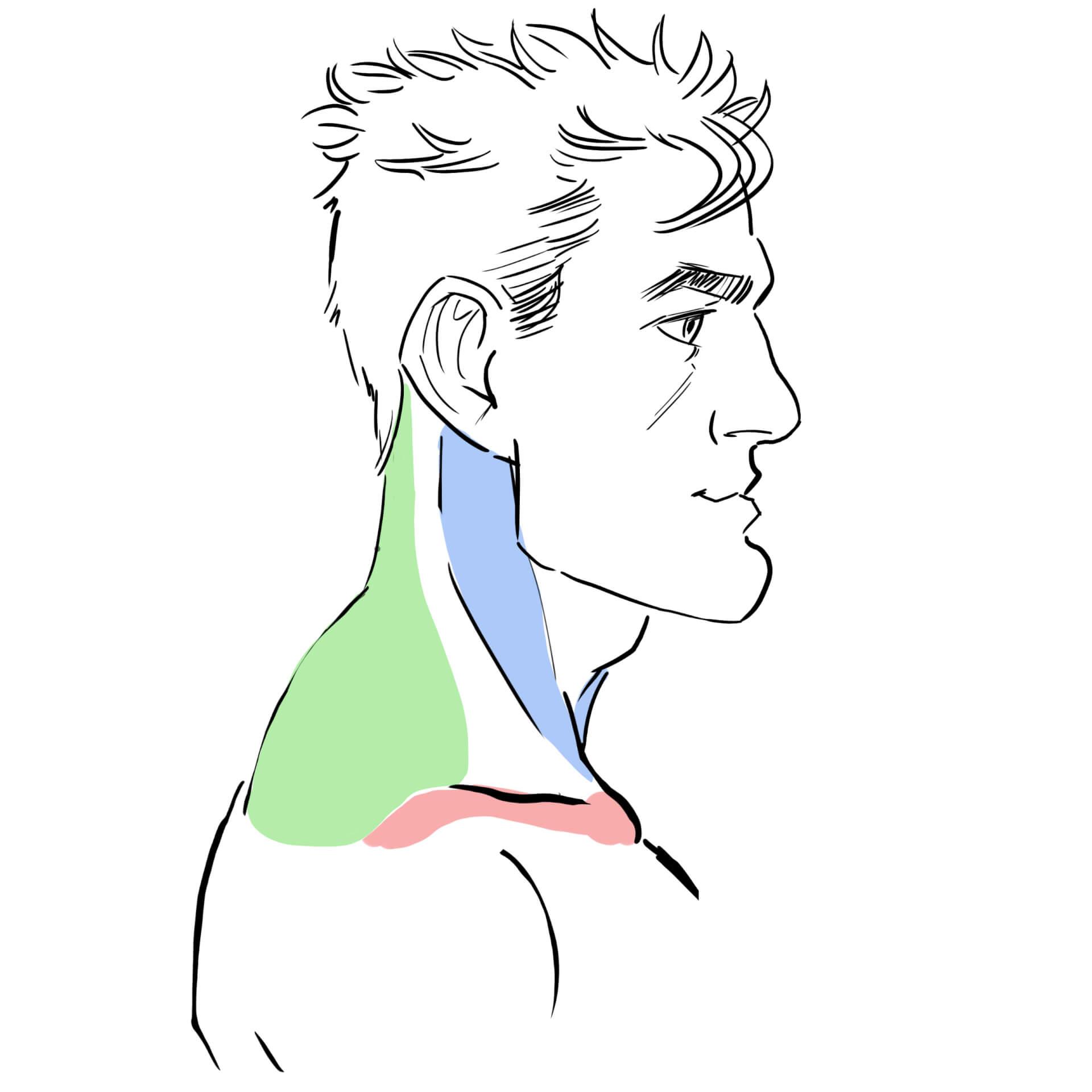 manga comic gameart hals nacken muskulatur nacken zeichnen lernen online kurs