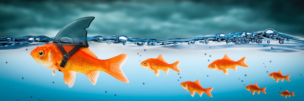 Führungsverhalten: Garantierte Methoden gegen Führungsfehler