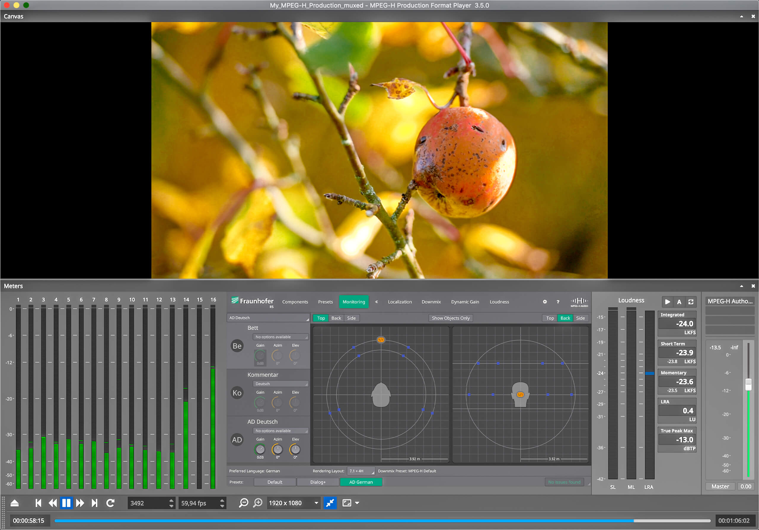 Screenshot of the MPEG-H Production Format Player. There is a preview of the video top centre showing an apple on a tree. Below there are various meters and parameters in the tool.