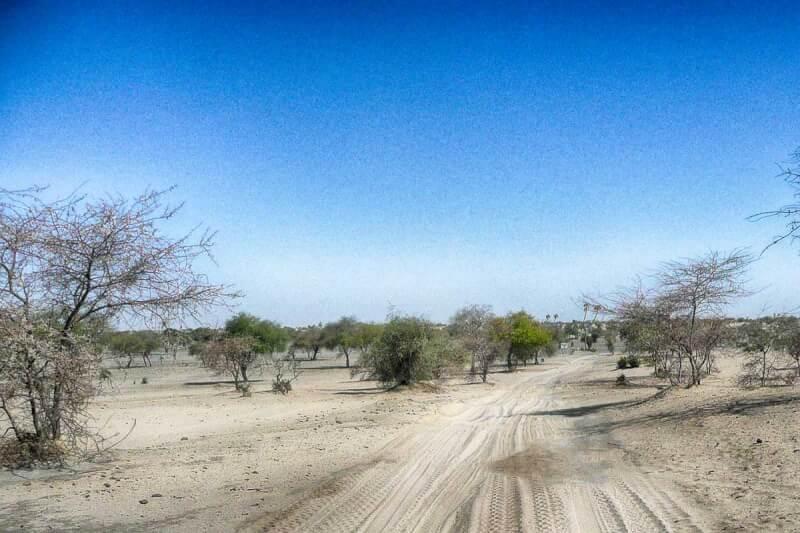 Sahel-Zone Wüste ohne Ende