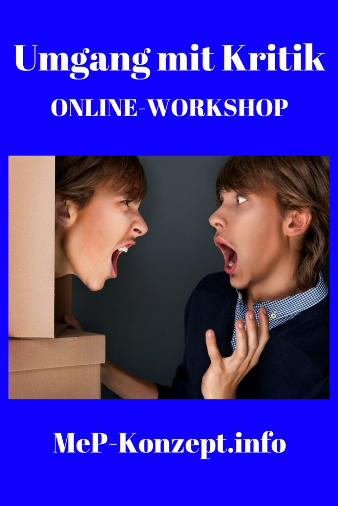 Online-Workshop Umgang mit Kritik, MeP-Konzept im August 2018