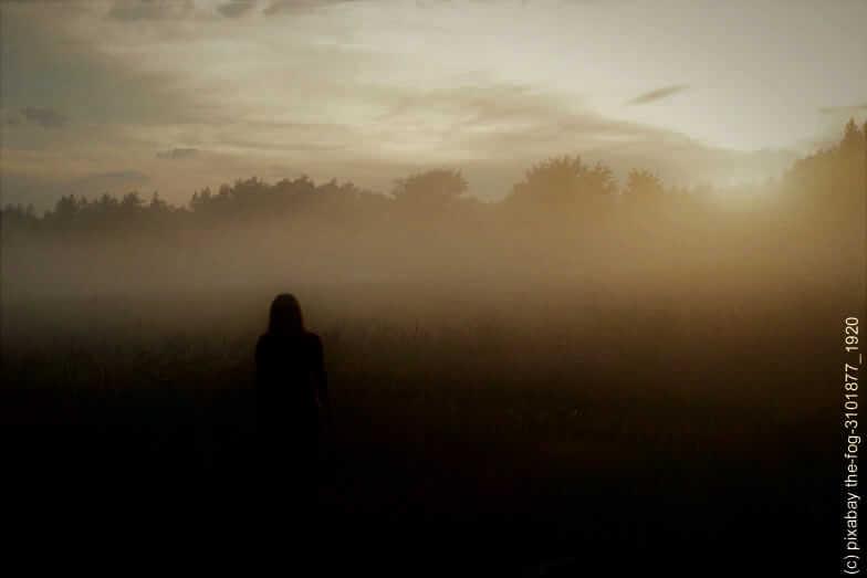 Verlasse die Nebelzone. 3 Themen mit 3 Fragen zur Sichtbarkeit Deines Business