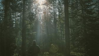 Das innere Brodeln / Freier Lauf für Ihre Gedanken