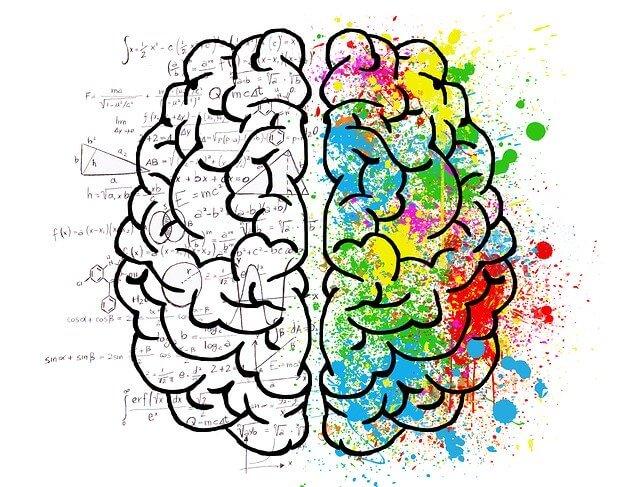 Abbildung Gehirn mit bunten Farben