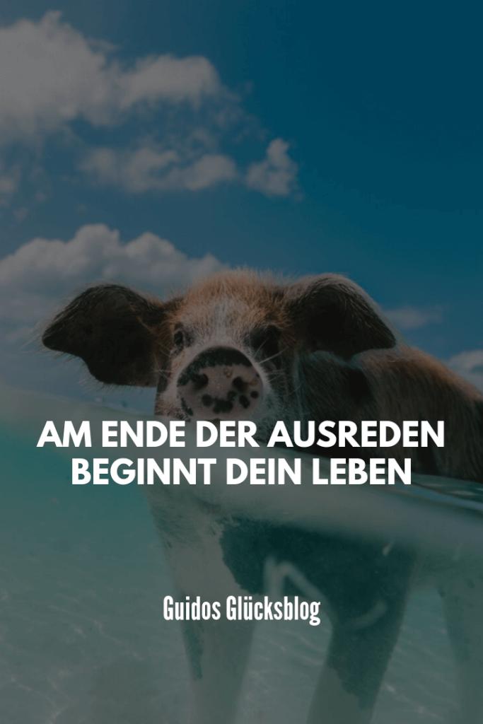 Am Ende der Ausreden beginnt dein Leben|Guidos Glücksblog