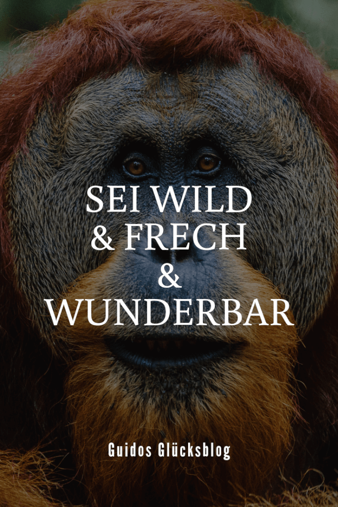 Sei wild & frech & wunderbar|Guidos Glücksblog