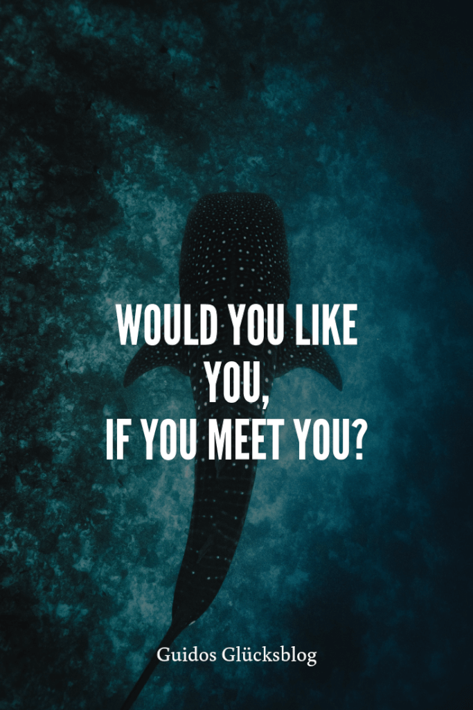 'Would you like you, if you meet you?' | Guidos Glücksblog | #spruch #lachen #glück