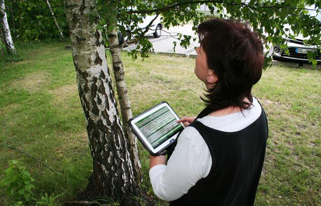 Baumerfassung tablet mob 632px