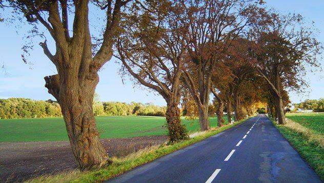 So wird die Pflicht zur Kür: Straßenkontrollen effizienter durchführen