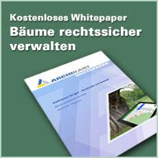 Whitepaper BAUM Button 230x230