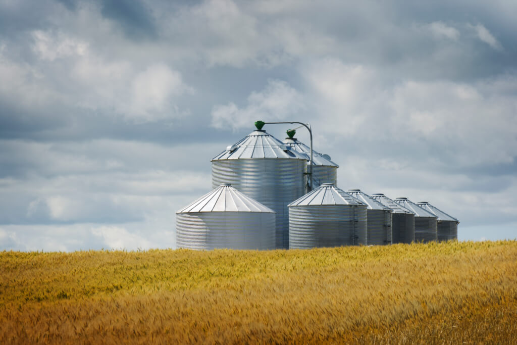 Grain silos and wheat field