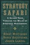Strategy Safari small