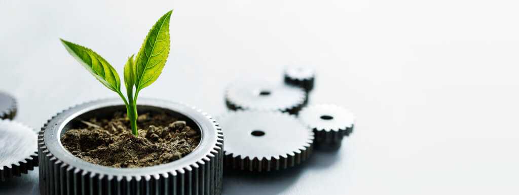 iStock 1263055085 plant in gear