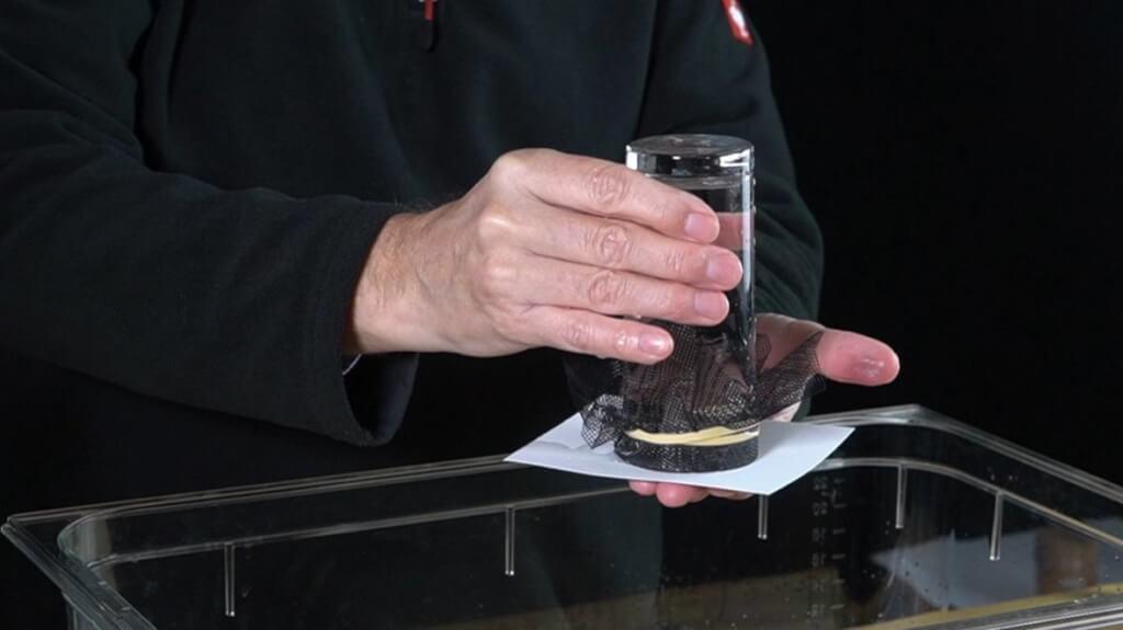 Das Blatt Papier hilft, alle Maschen des Netzes luftdicht mit Wasser zu verschließen.