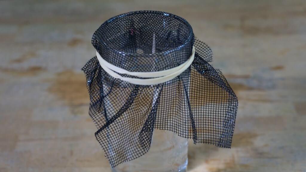 Das Mückennetz wird mit einem Gummiband auf dem Glas festgespannt