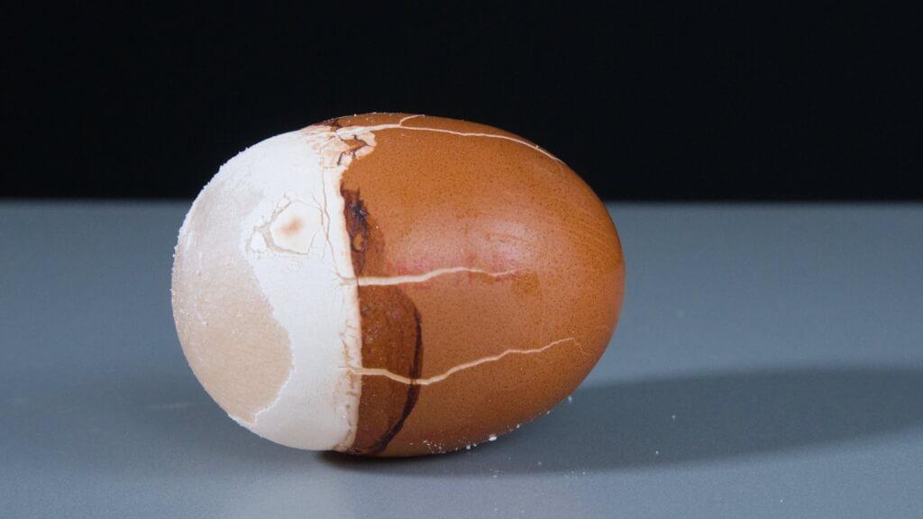Die dünne Eihaut ist halb durchlässig. Sie lässt das Wasser rein aber das Innere des Eis nicht raus.