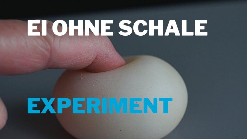 Ei ohne Schale – Chemie Experiment in der Küche
