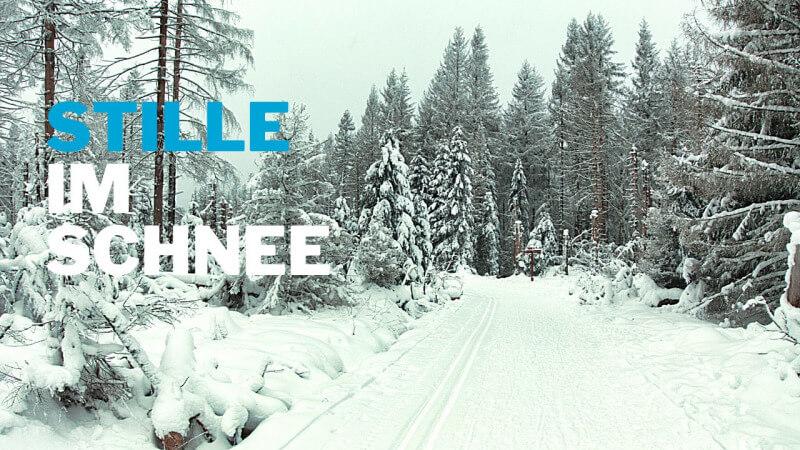Schnee schluckt den Schall