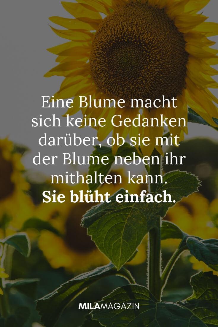 Eine Blume macht sich keine Gedanken darüber, ob sie mit der Blume neben ihr mithalten kann, Sie blüht einfach. |MILAMAGAZIN