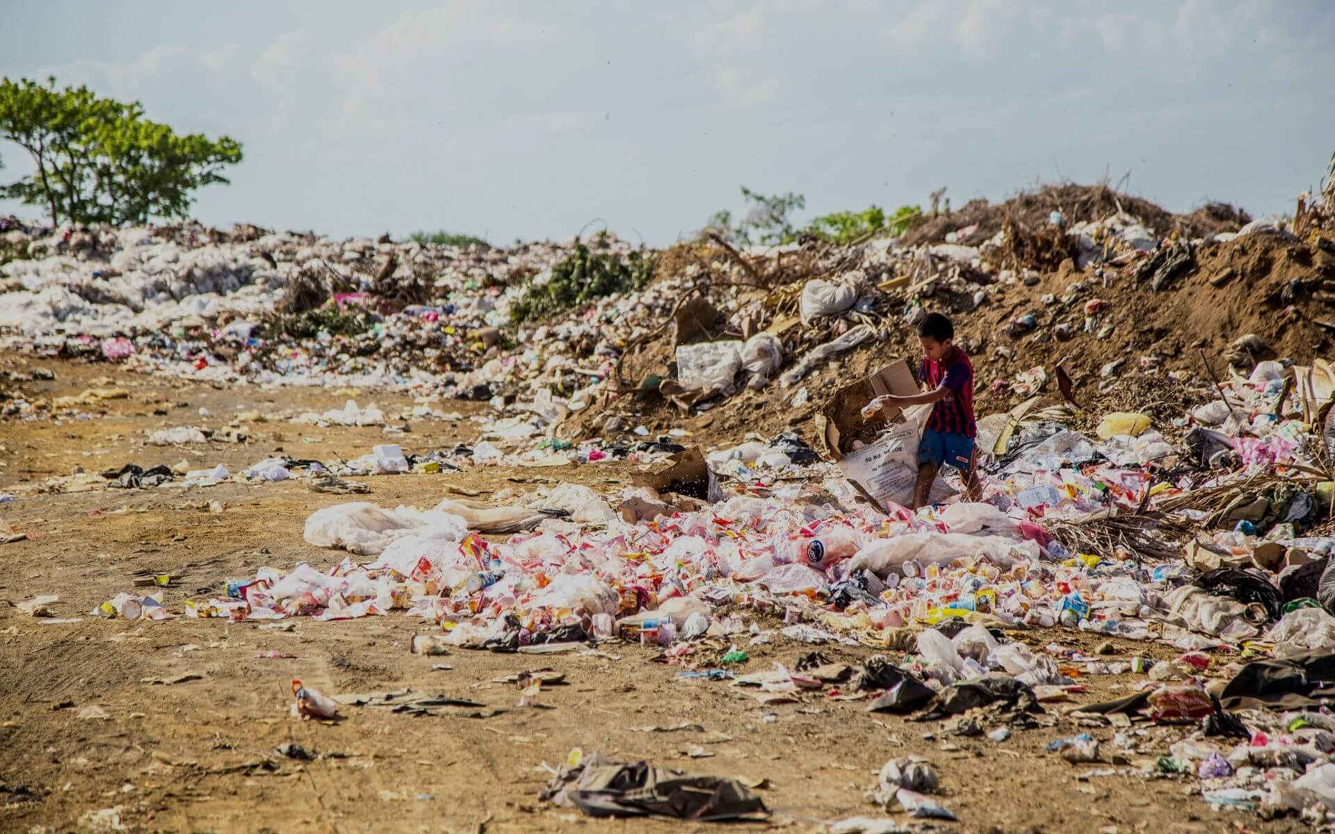Sag dem Plastik den Kampf an! 7 einfache Tipps plastikfrei und nachhaltig zu leben