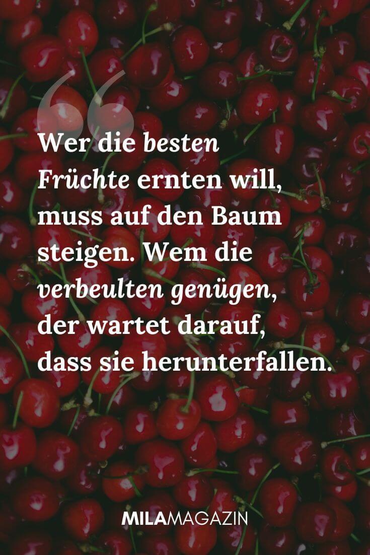 Wer die besten Früchte ernten will, muss auf den Baum steigen. Wem die verbeulten genügen, der wartet darauf, dass sie herunterfallen. | MILAMAGAZIN