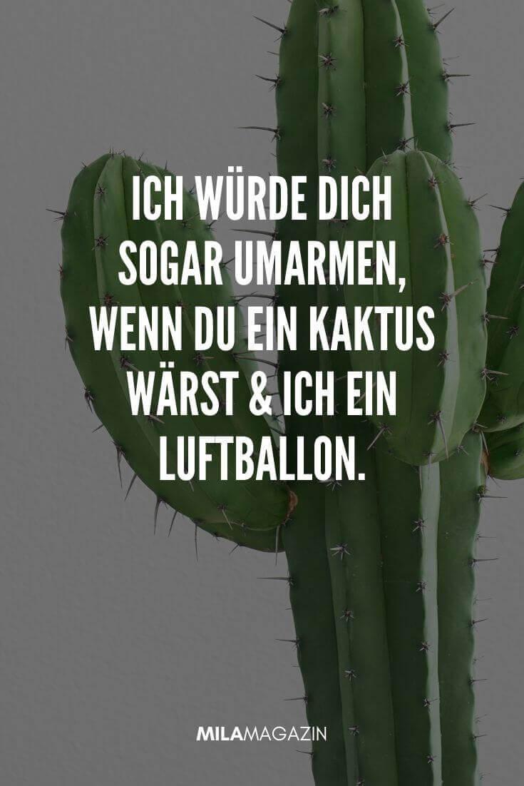 Ich würde dich sogar umarmen, wenn du ein Kaktus wärst und ich ein Luftballon. | MILAMAGAZIN