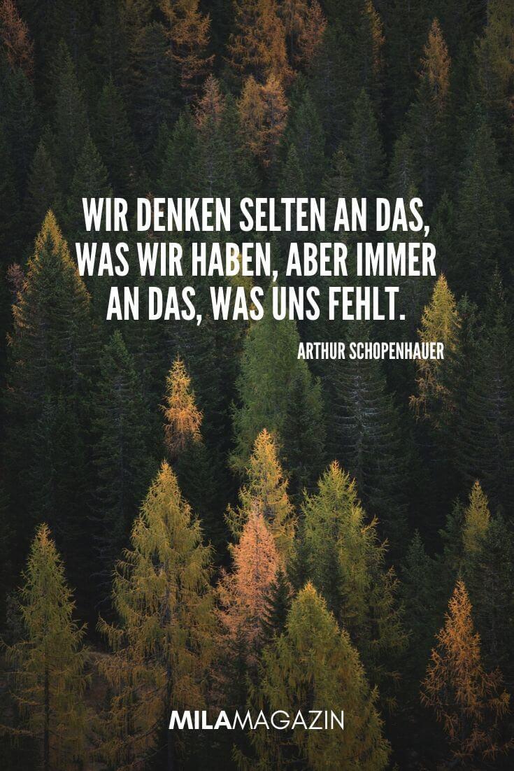 Wir denken selten an das, was wir haben, aber immer an das, was uns fehlt. (Arthur Schopenhauer) | MILAMAGAZIN | #whatsapp #status #sprueche #quotes