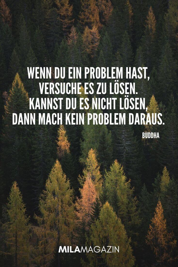 Wenn du ein Problem hast, versuche es zu lösen. Kannst du es nicht lösen, dann mach kein Problem daraus. (Buddha) | MILAMAGAZIN | #whatsapp #status #sprueche #quotes