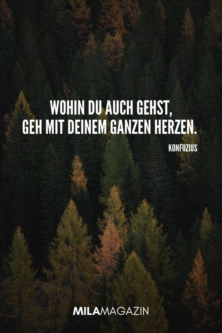 Wohin du auch gehst, geh mit deinem ganzen Herzen. (Konfuzius) | MILAMAGAZIN | #whatsapp #status #sprueche #quotes