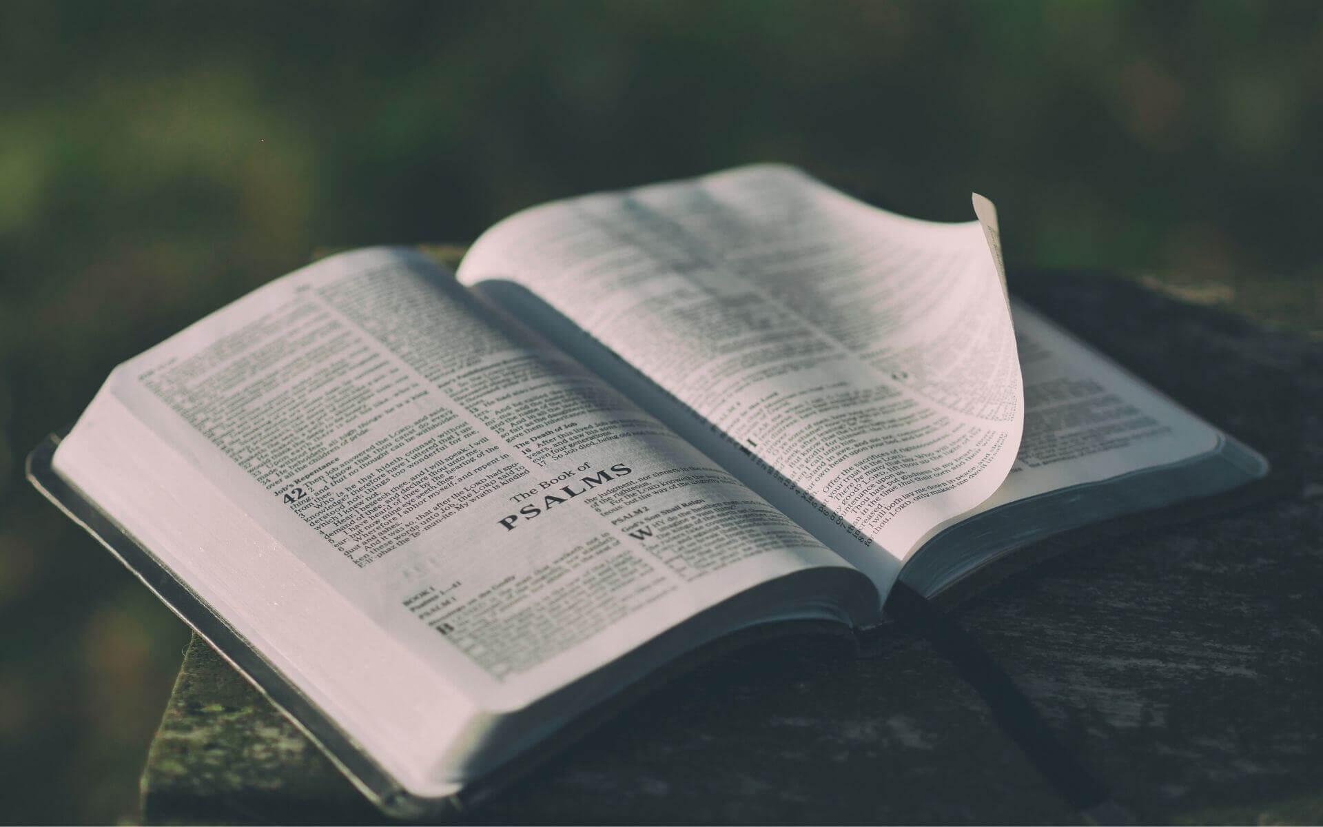 24 weise Sprüche und Zitate, die deinen Horizont erweitern werden!