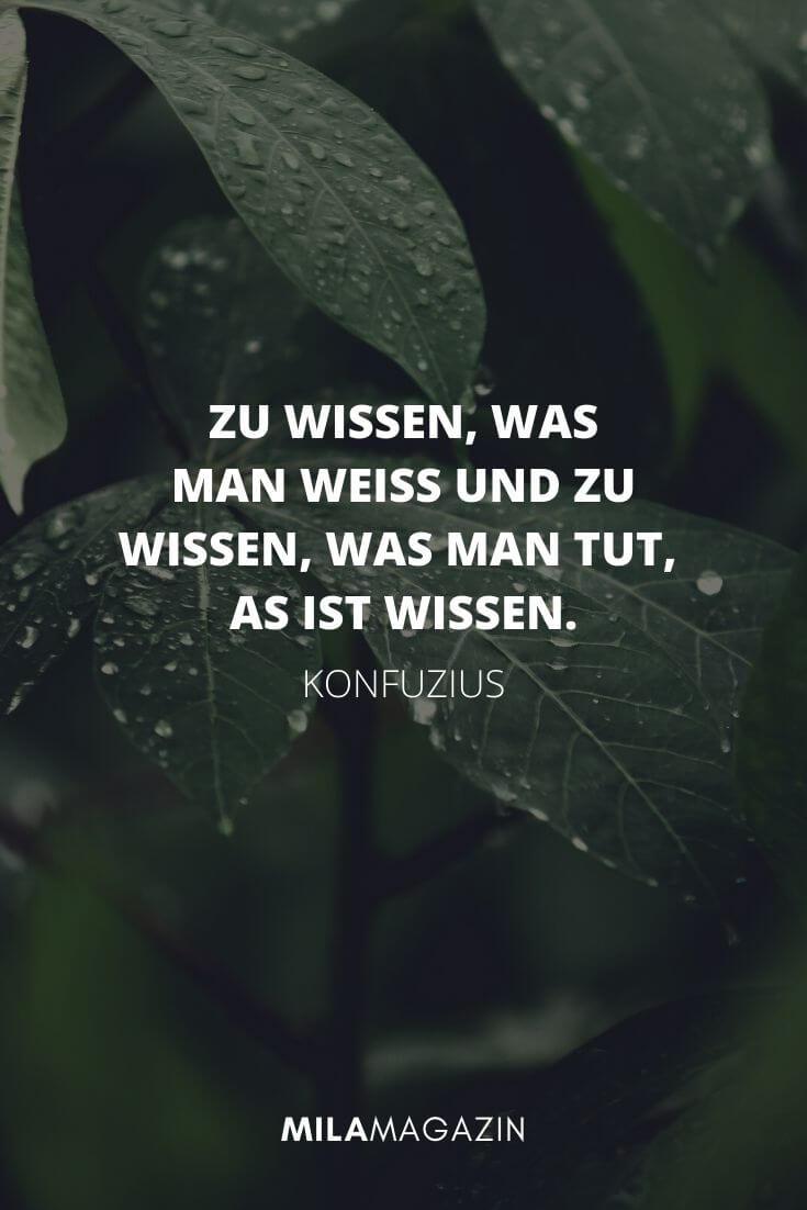 Wer ständig glücklich sein möchte, muss sich oft verändern. - Konfuzius | MILAMAGAZIN