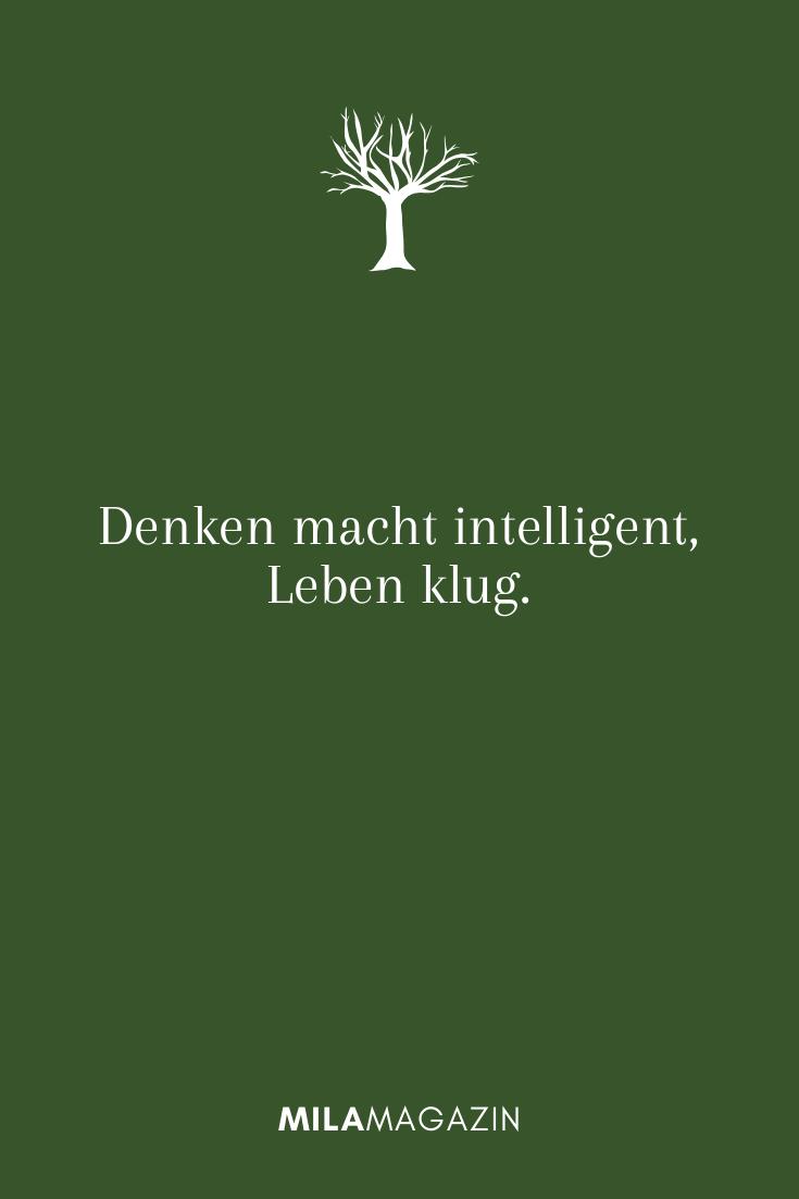 Denken macht intelligent, Leben klug.
