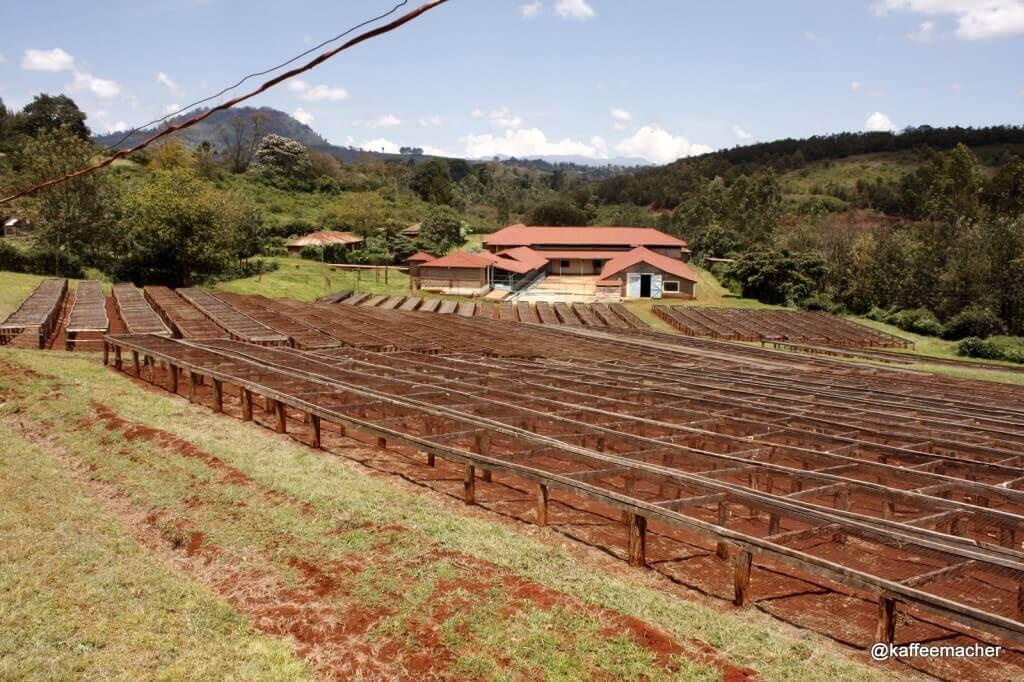 1400 hektar land