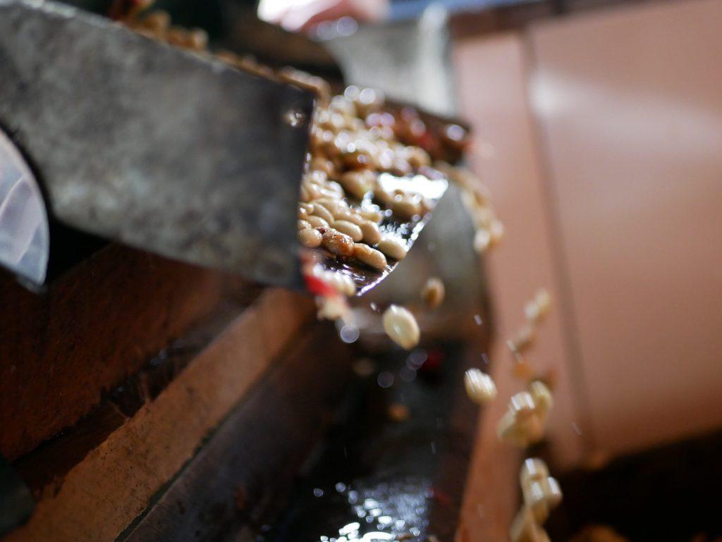 Kaffeesamen werden auf einer despulpadora aus der Kirsche gequetscht