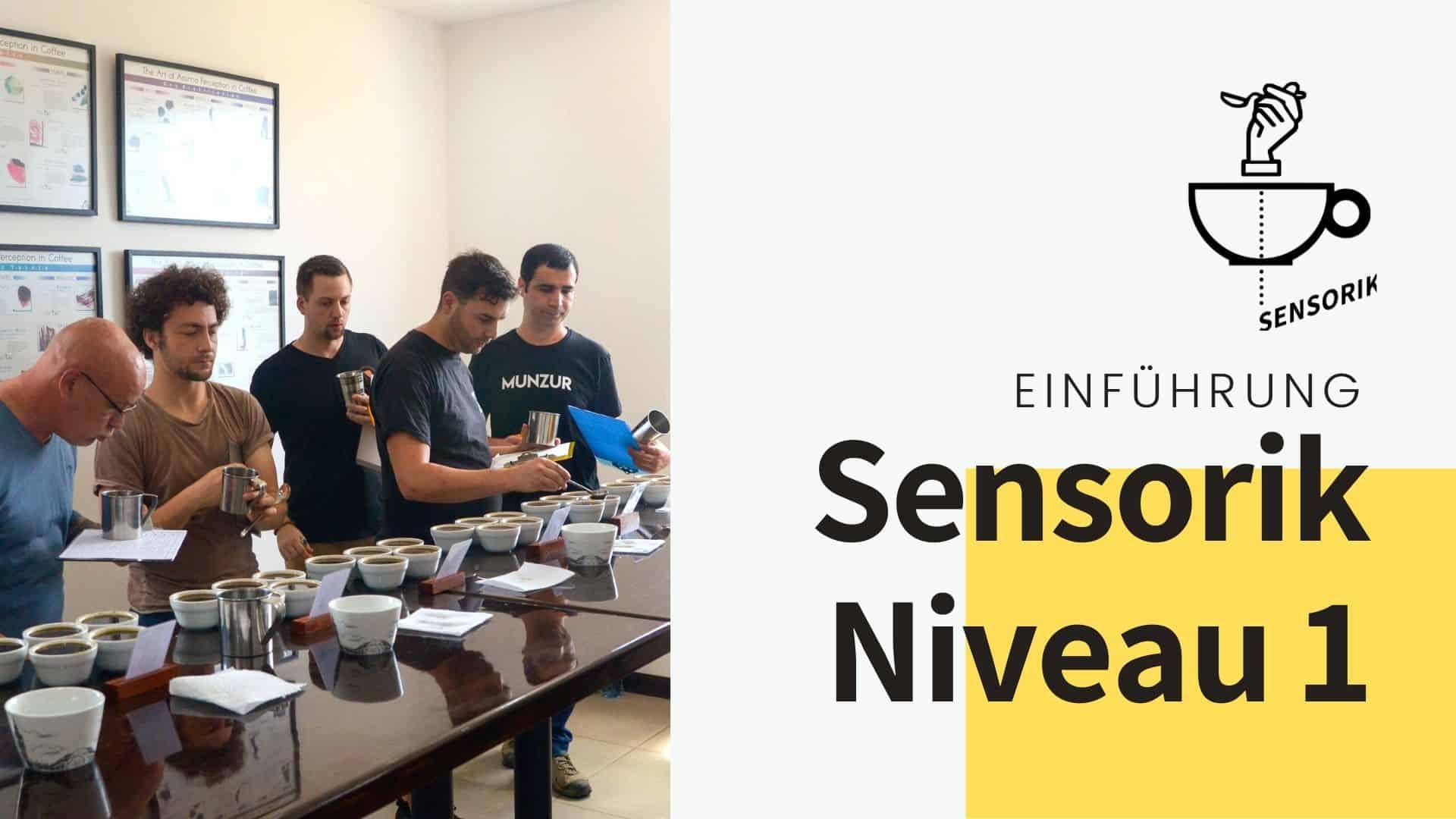 sensorik einführung