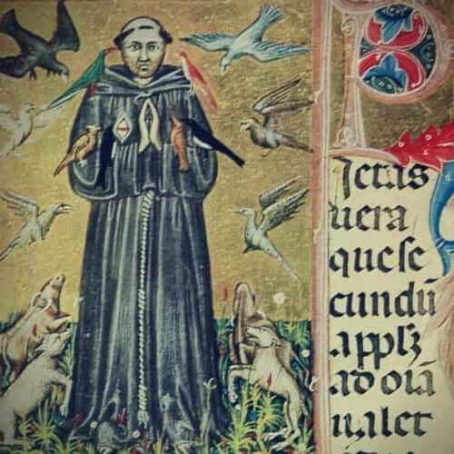 Der Mythos vom finsteren Mittelalter