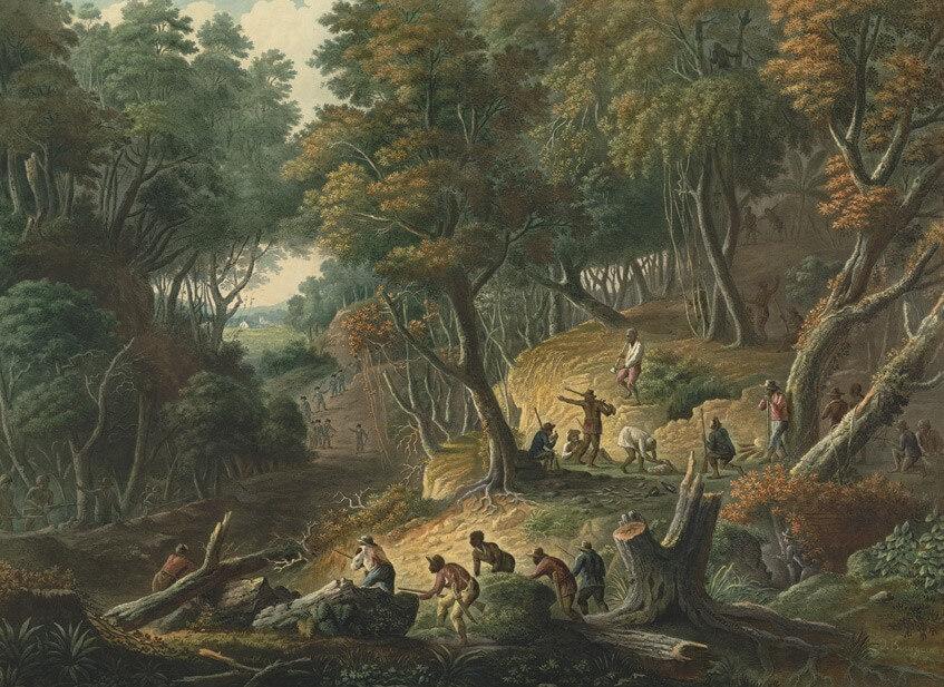 Die Geschichte der Maroons: Sklavenrebellen in Amerika