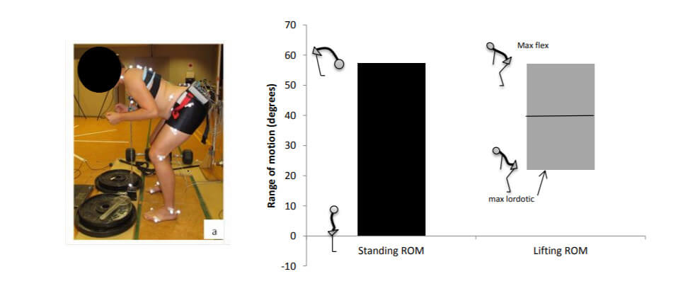 Können Schmerzen im unteren Rücken durch eine gute Rumpf-Stabilisation und neutrale Wirbelsäulen-Position verhindert werden?