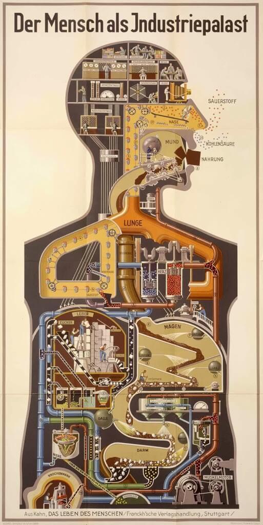Mensch als Industriepalast