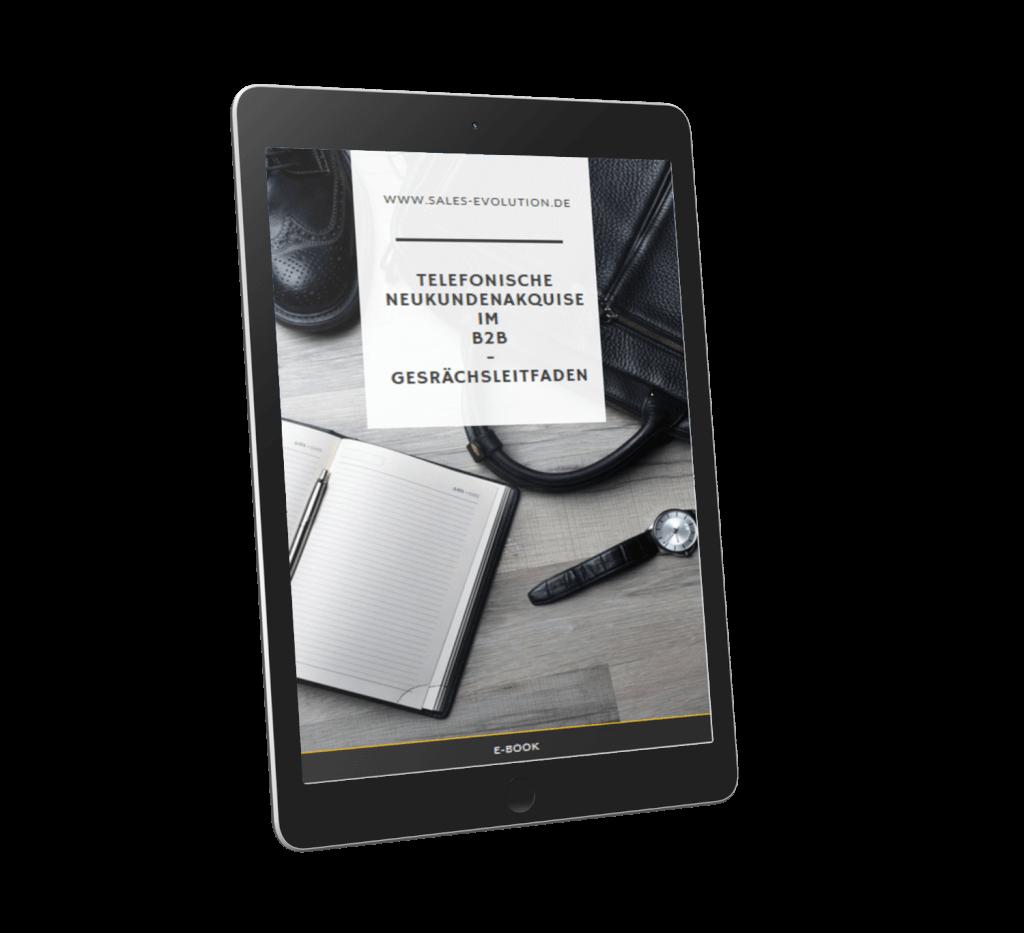 E-Book: Telefonische Neukundenakquise im B2B - Gesprächsleitfaden