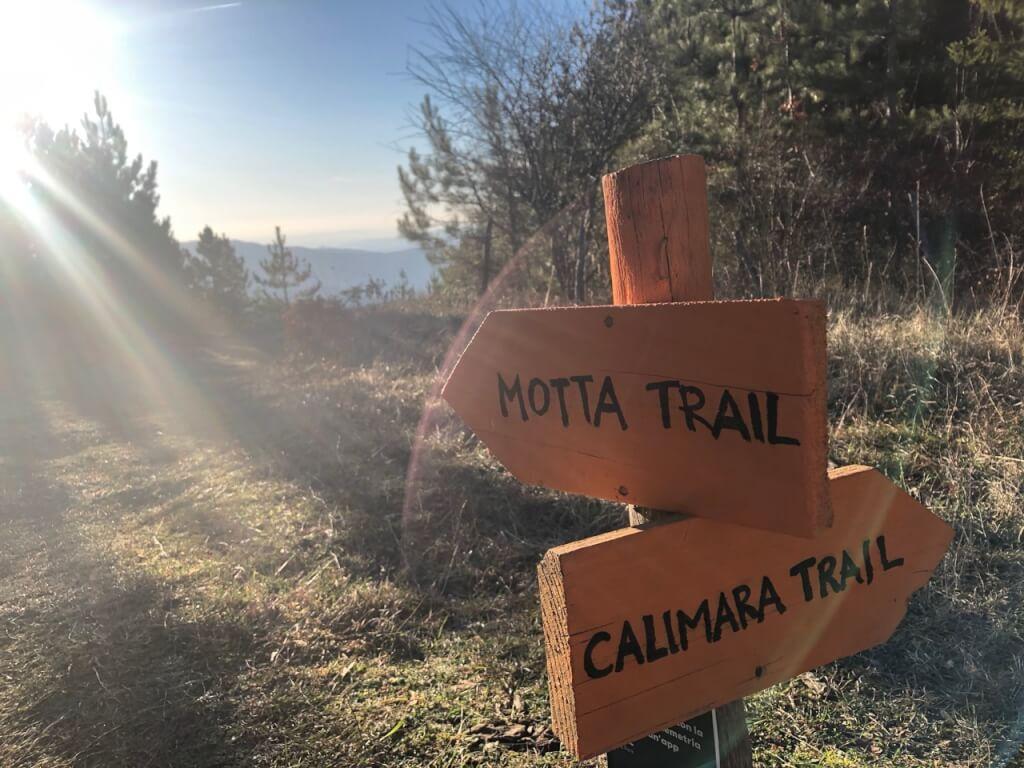 Mountainbike Roadtrip